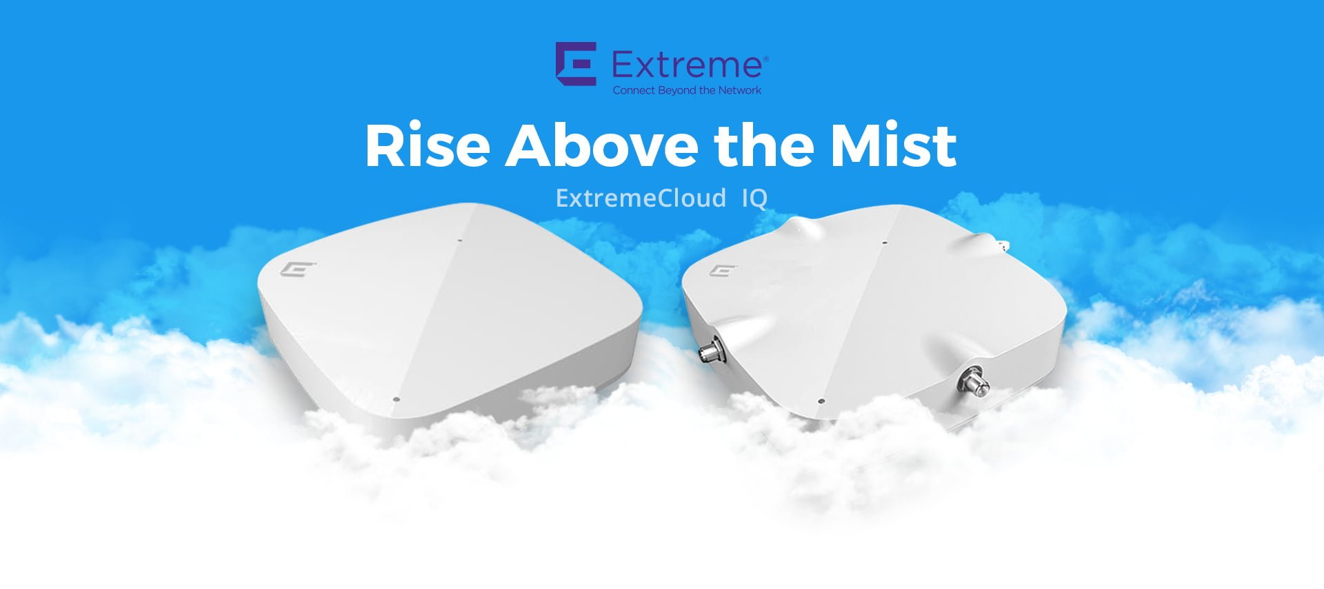 Rise Above the Mist 1